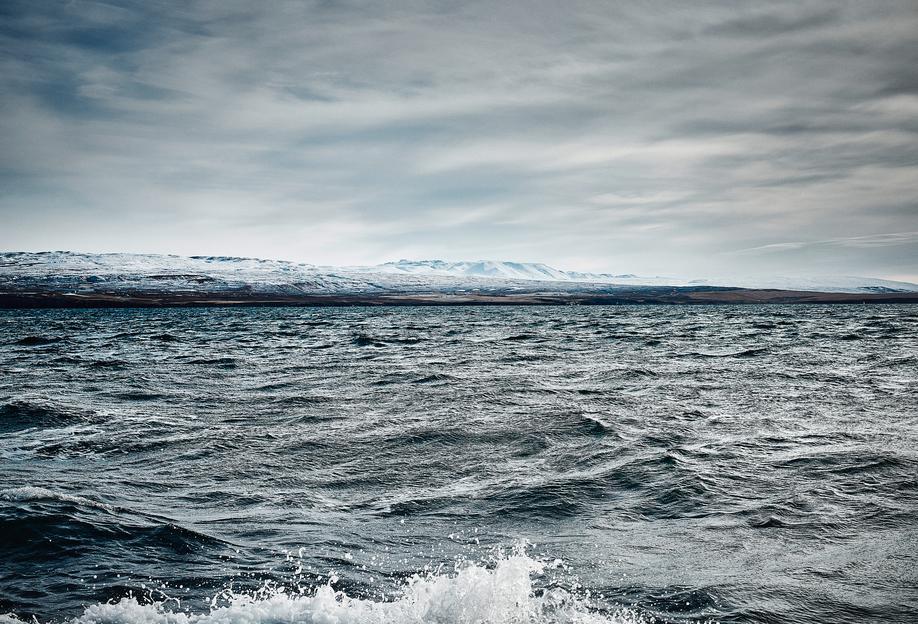 Islands Küste IV -Alubild