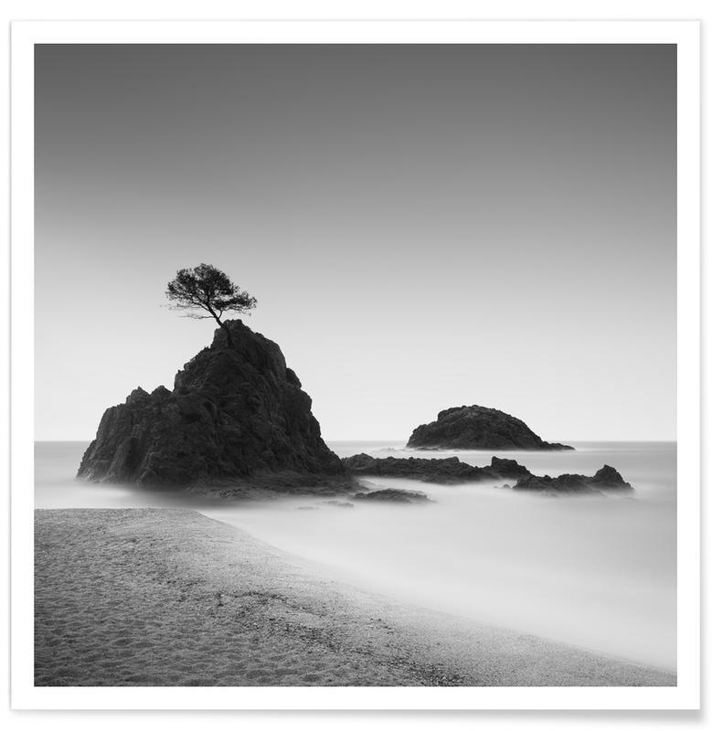 Beaches, Black & White, Travel, Árbol - Spanien Poster