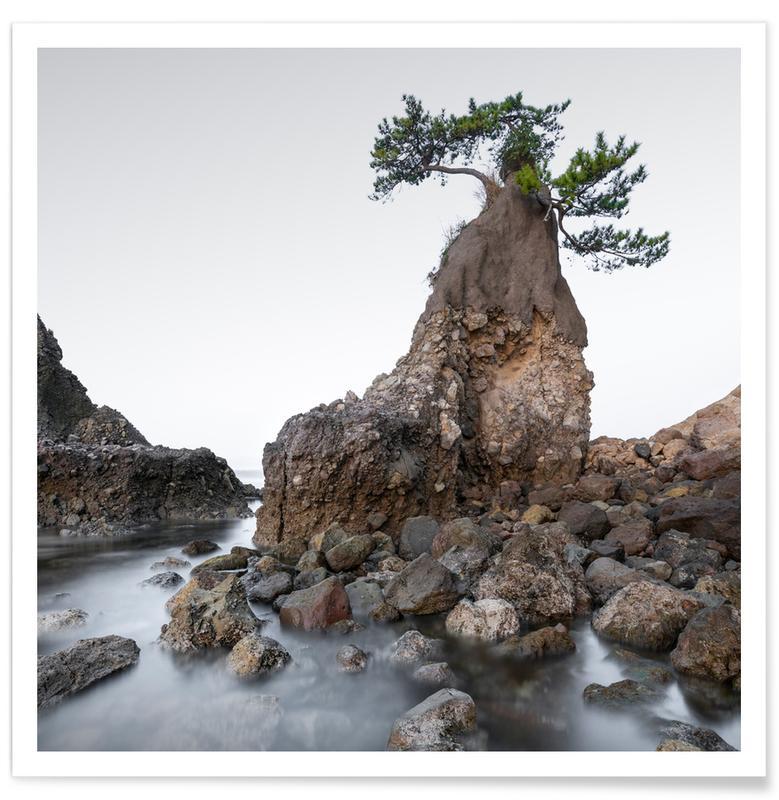 , Ōita Tree   Japan Poster