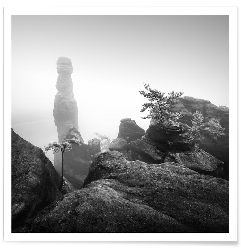 Zwart en wit, Barbarine Study 3 - Elbsandsteingebirge poster