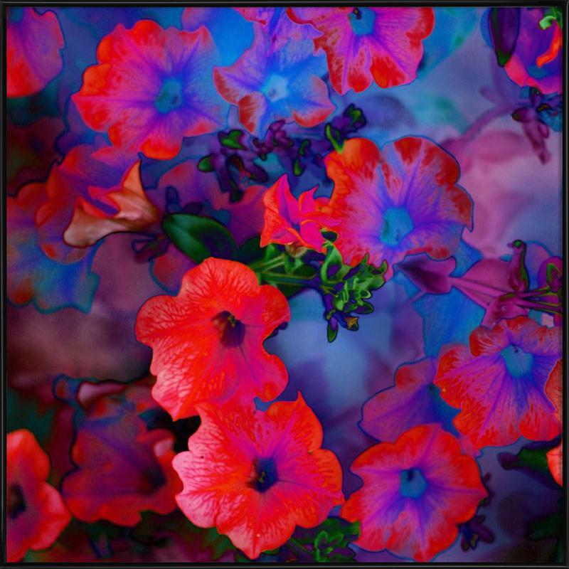 Ruby Red Vine -Bild mit Kunststoffrahmen
