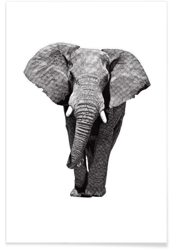 Schwarz & Weiß, Safari-Tiere, African Elephant -Poster