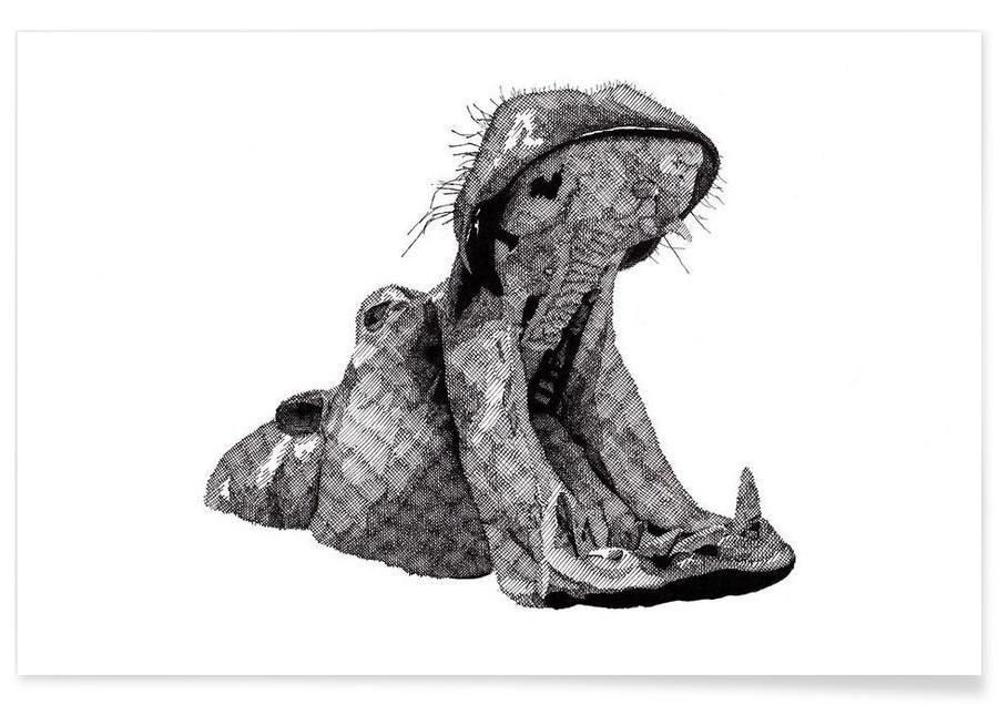 Svart & vit, Safaridjur, Hippo Pencil Drawing Poster