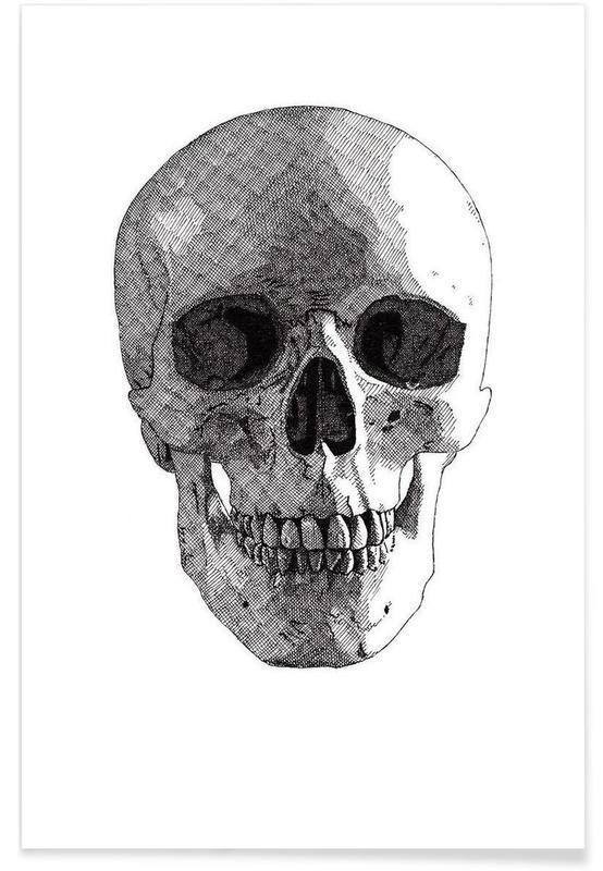 Schedels, Zwart en wit, Schedel - potloodtekening poster