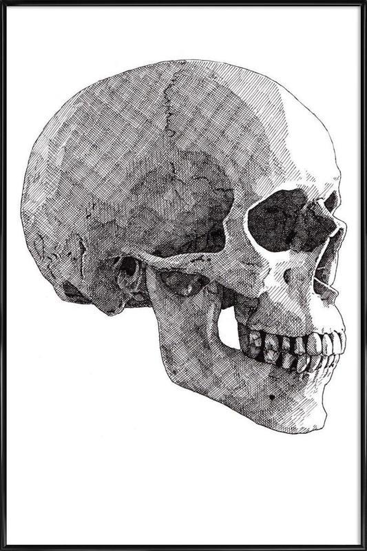 Skull 3 Framed Poster