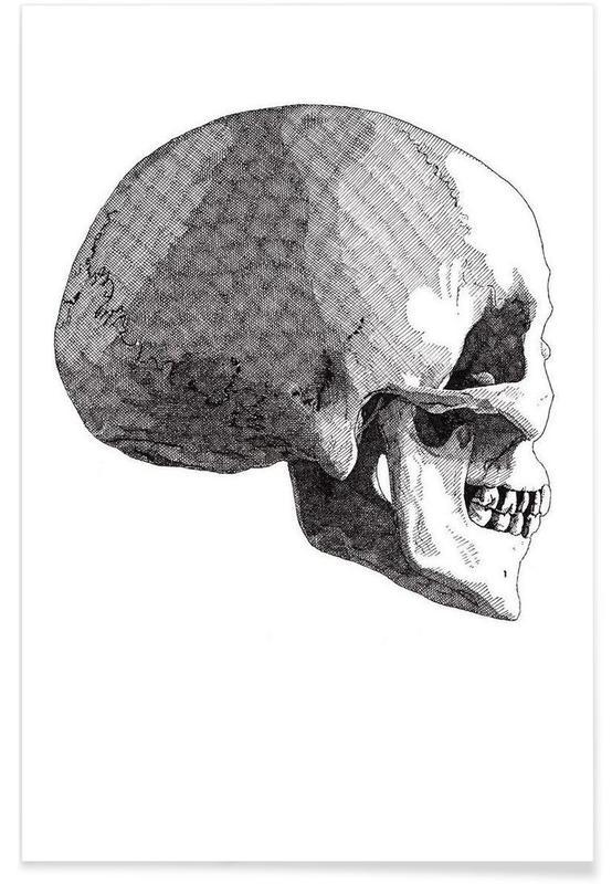 Schwarz & Weiß, Totenköpfe, Skull 5 -Poster