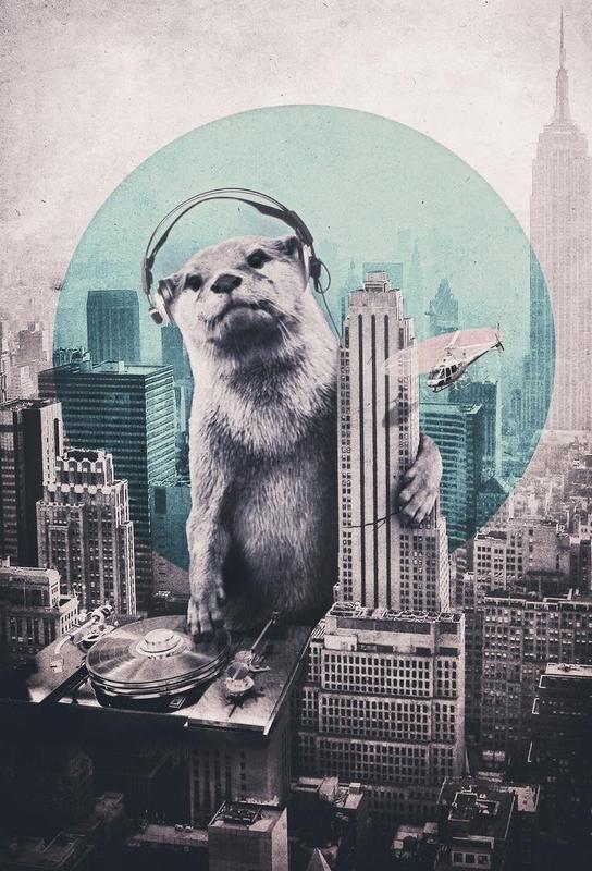 DJ -Alubild