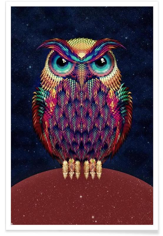 Owl 2 affiche