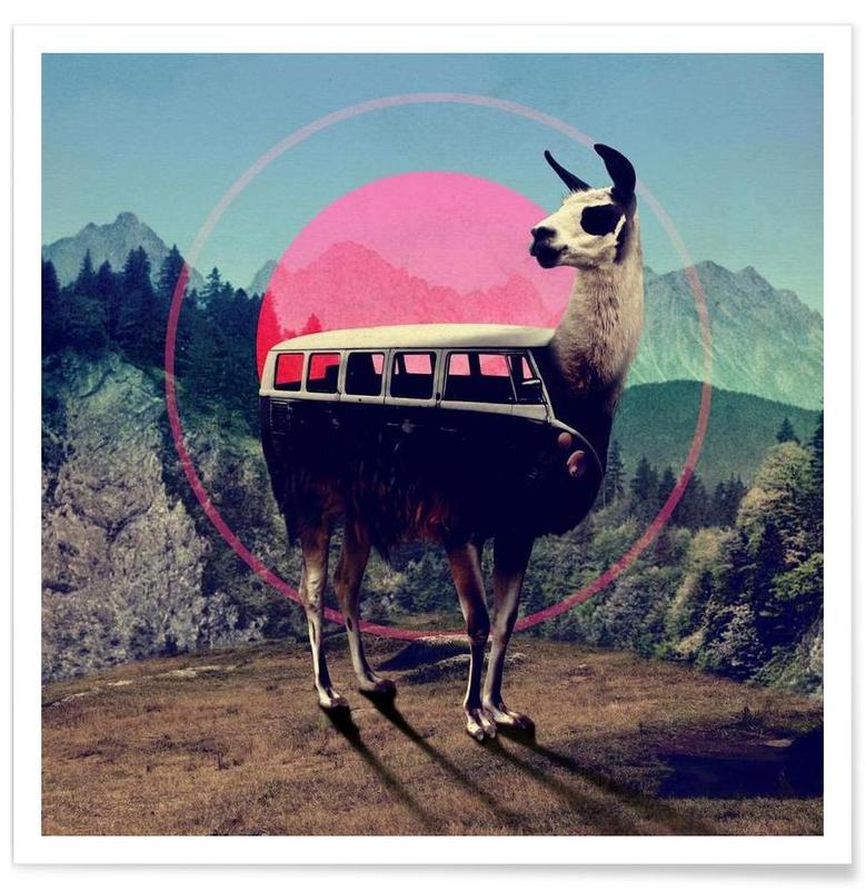 Llama affiche
