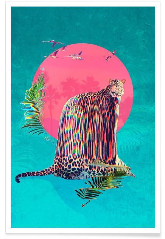 Jaguars, Jaguar affiche