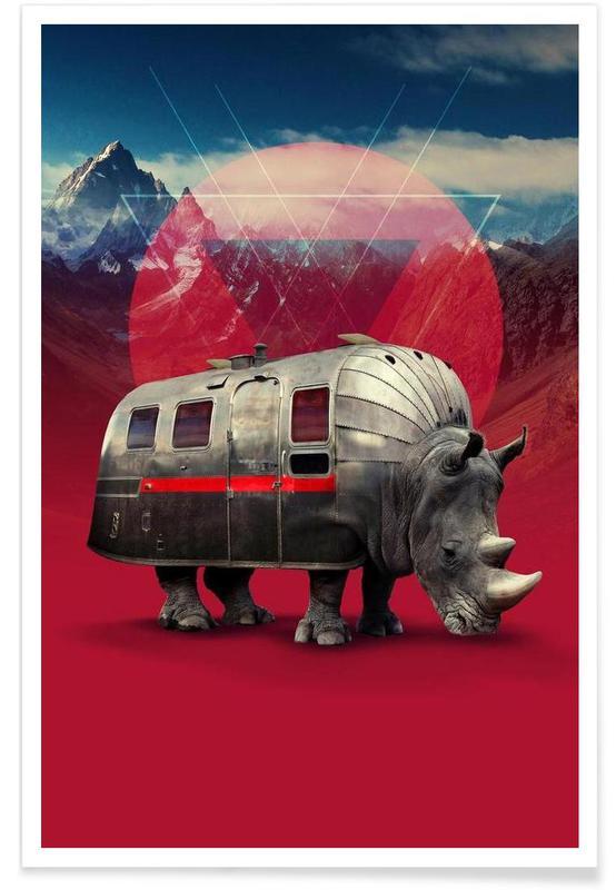 Rhinocéros, Rhino affiche