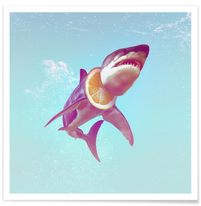 Lemon Shark affiche