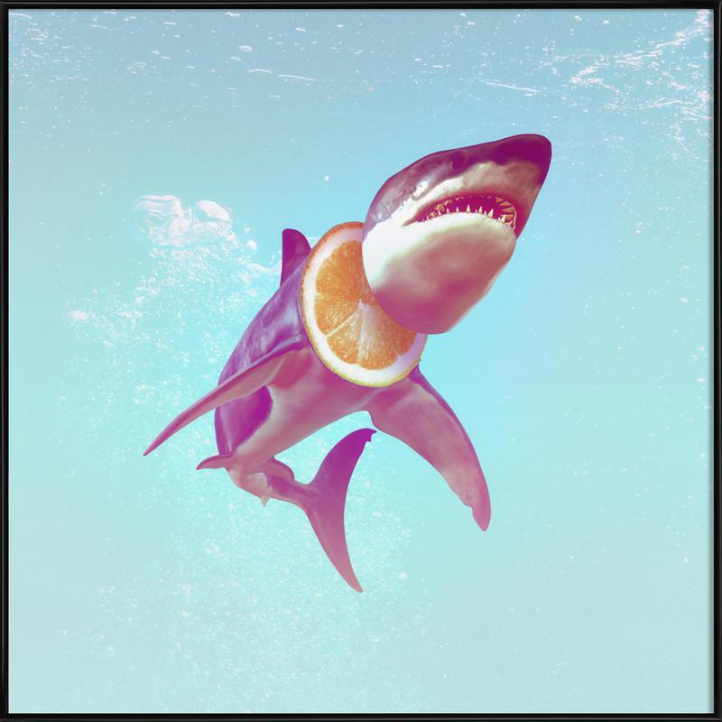 Lemon Shark -Bild mit Kunststoffrahmen