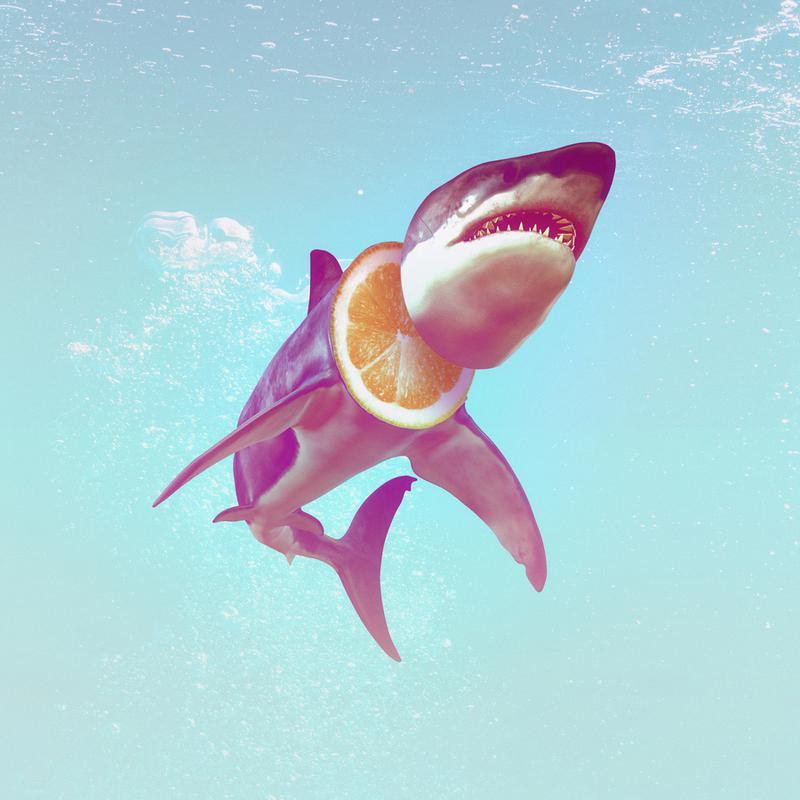 Lemon Shark canvas doek