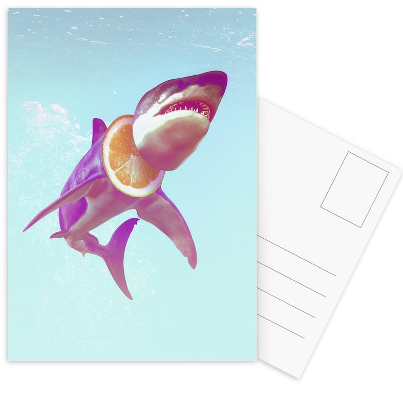 Lemon Shark Postcard Set