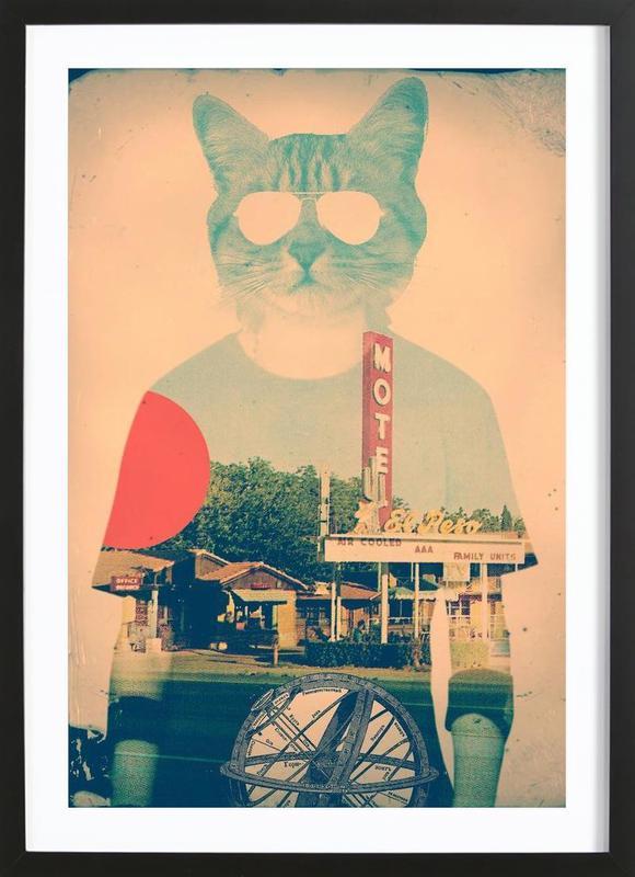 Cool Cat Framed Print Juniqe