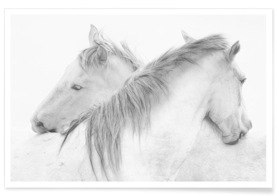 Horses - Marie-Anne Stas Poster