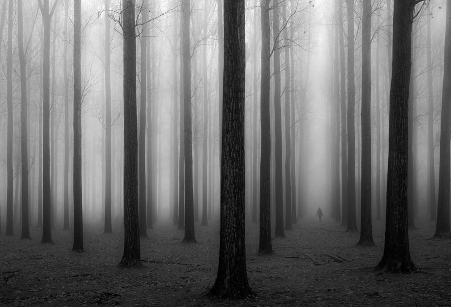 In a fog - Jochen Bongaerts -Acrylglasbild