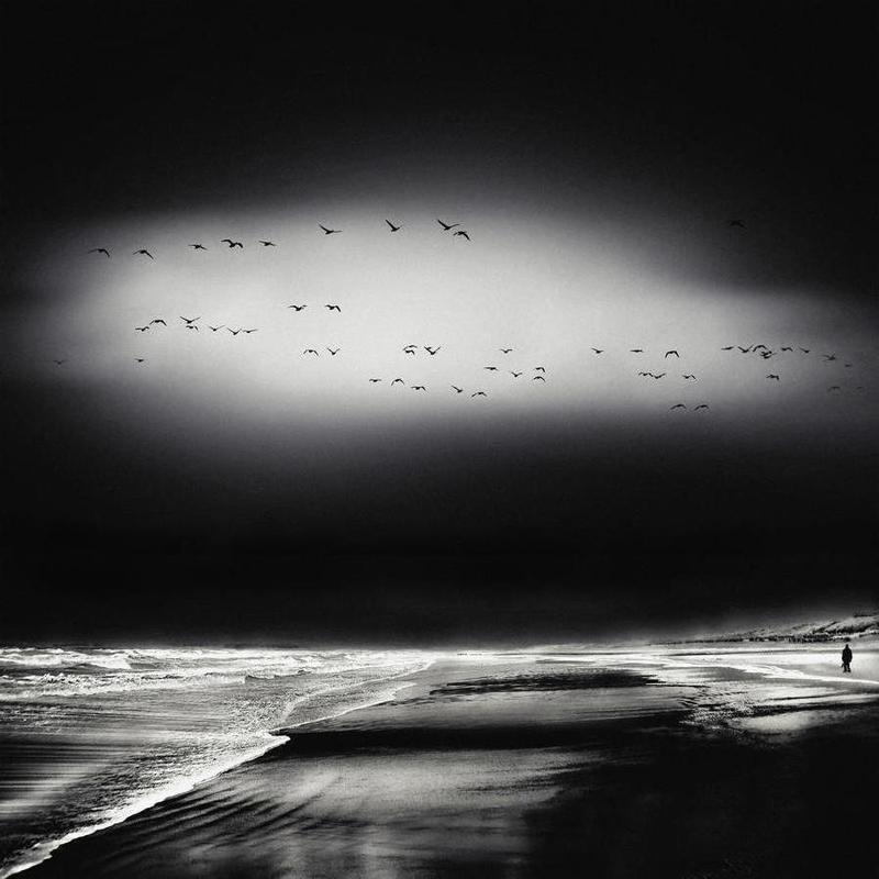 The Song Of The Wet Sands - Piet Flour -Leinwandbild