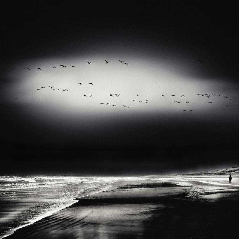 The Song Of The Wet Sands - Piet Flour -Acrylglasbild