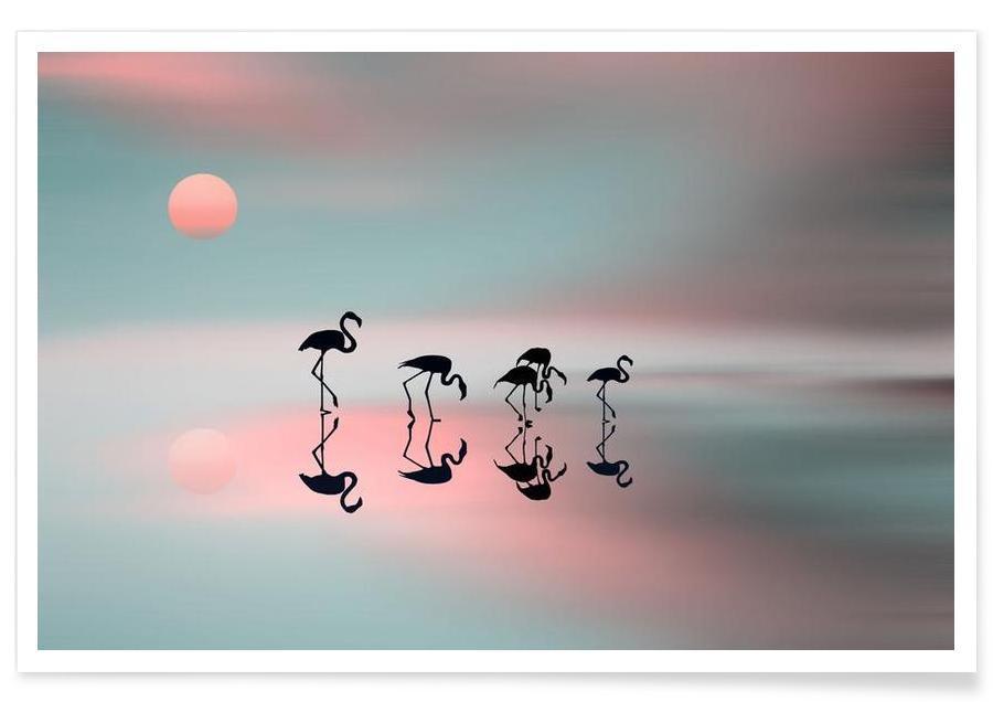 Family flamingos - Natalia Baras Poster