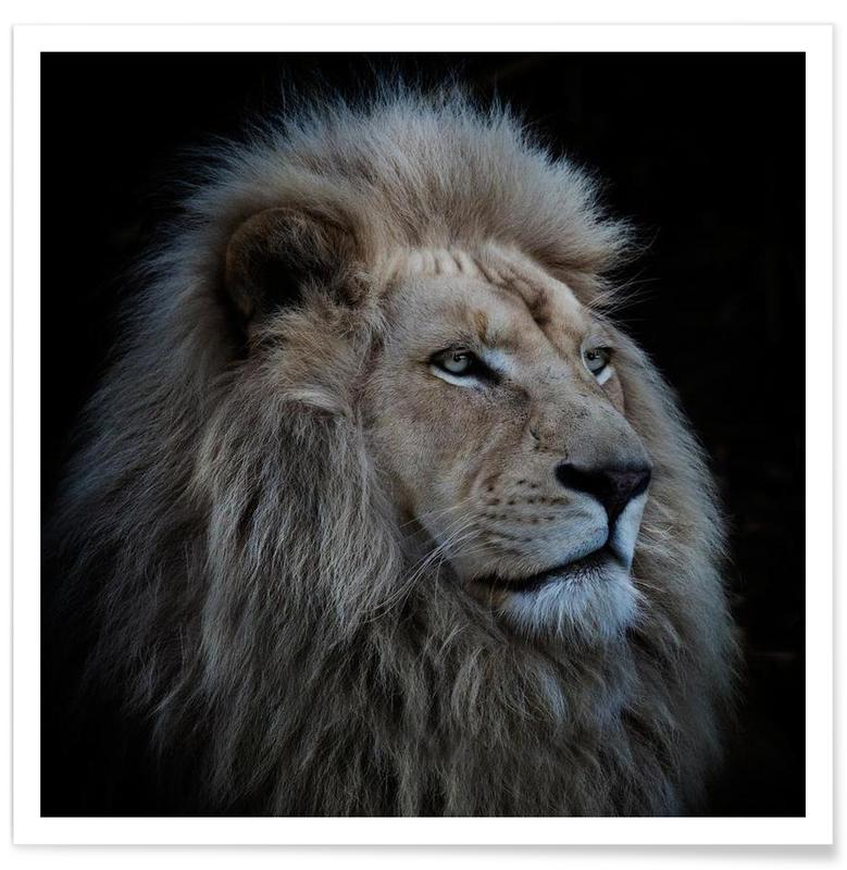 Proud Lion - Louise Wolbergs -Poster
