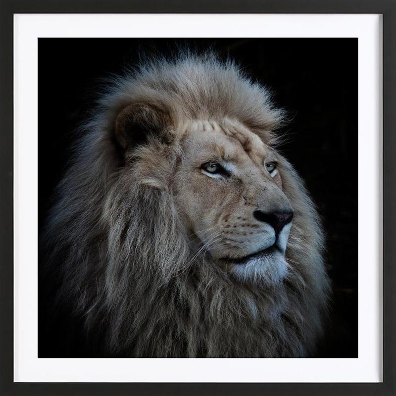 Proud Lion - Louise Wolbergs -Bild mit Holzrahmen