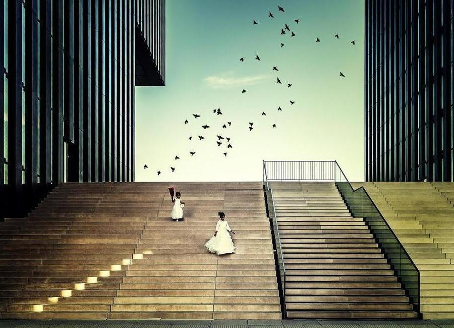 Free Like A Bird... - Dennis Mohrmann -Leinwandbild