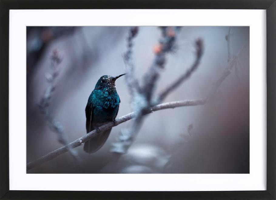 Electrical Blue - Fabien Bravin Framed Print