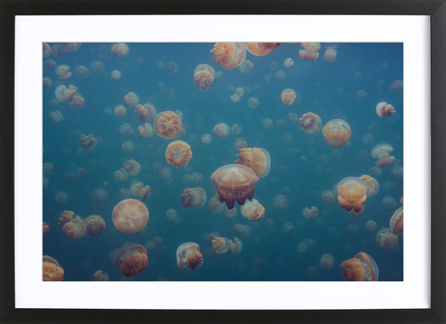 Odd World - Piron Xavier Framed Print