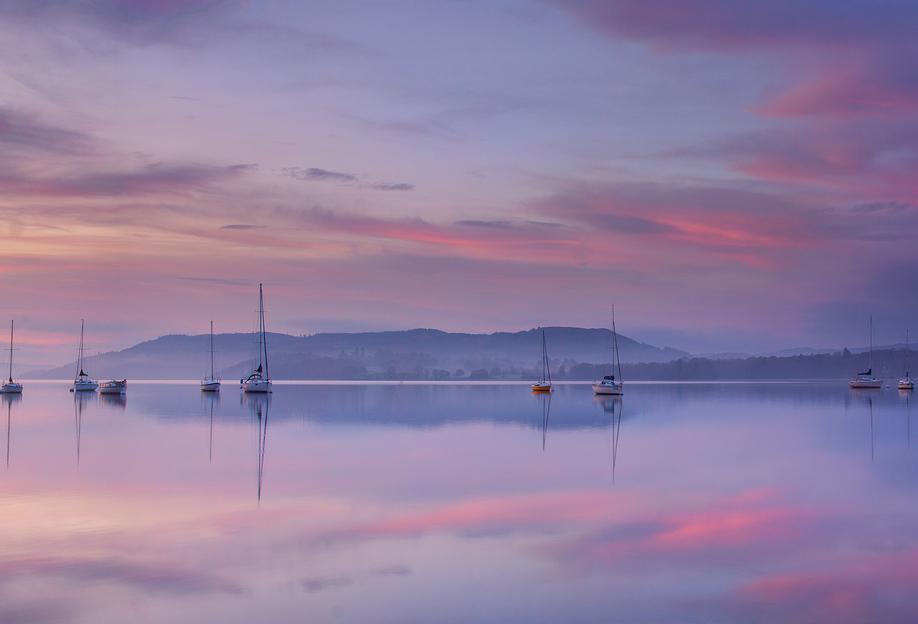 Pink Morning - Margarita Chernilova Acrylic Print