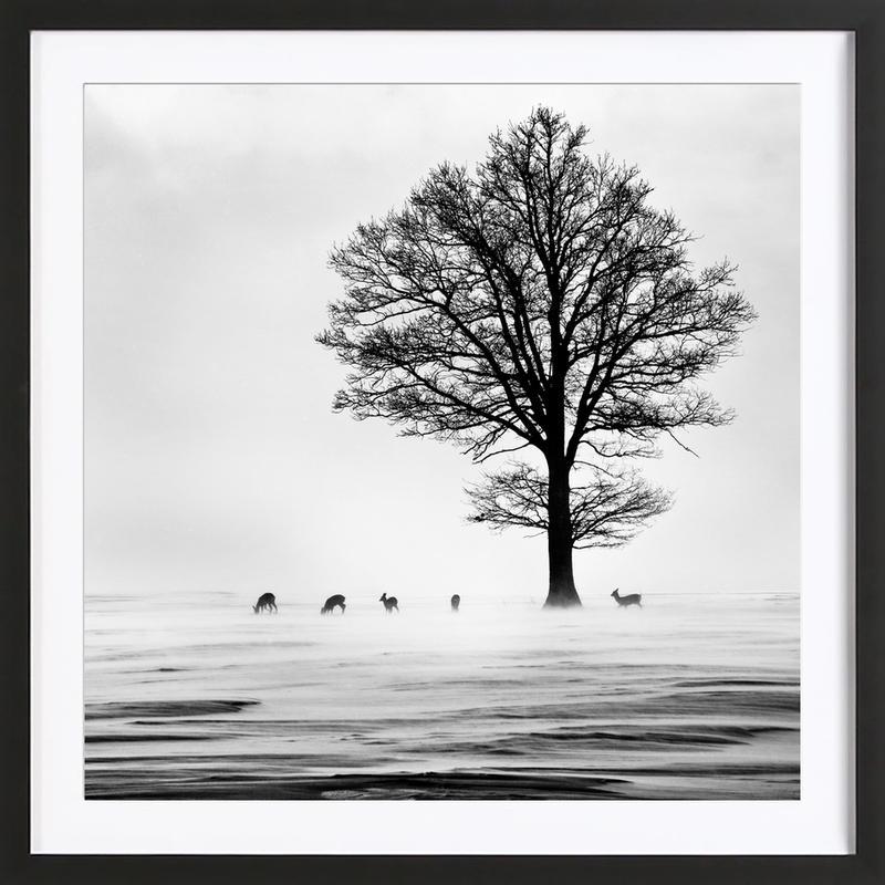 Roes - Dansiga -Bild mit Holzrahmen