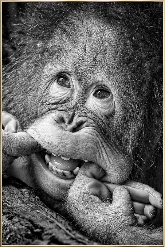 Big Smile.....Please - Angela Muliani Hartojo Poster in Aluminium Frame