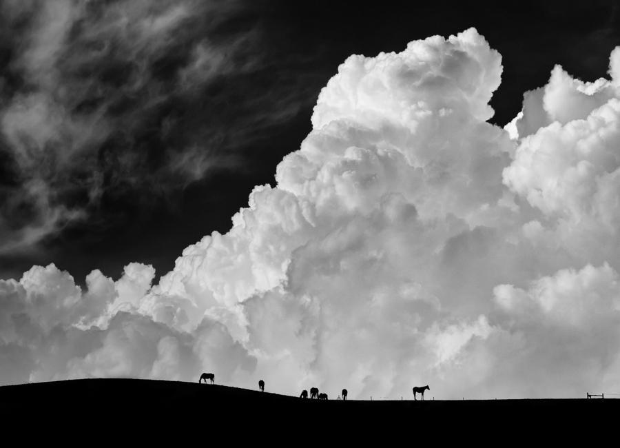 The Calm Before The Storm - Gloria Salgado Gispert Canvas Print