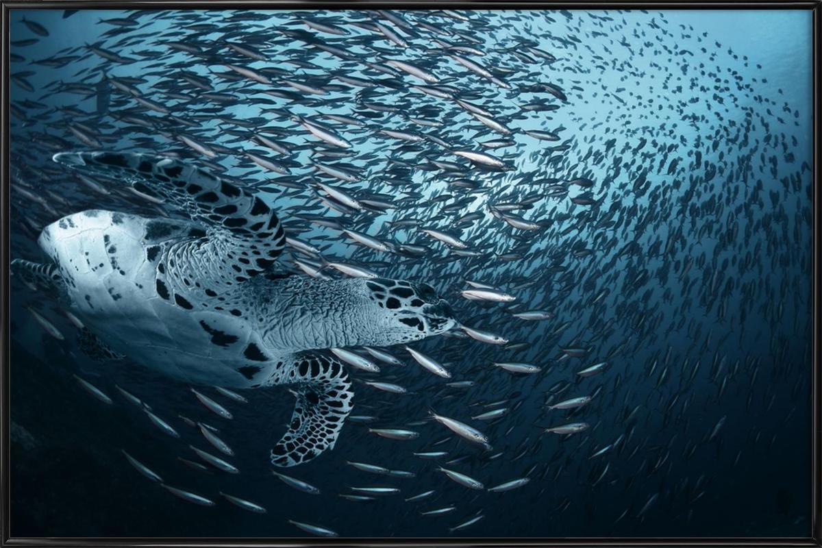 Bend - Andrey Narchuk -Bild mit Kunststoffrahmen