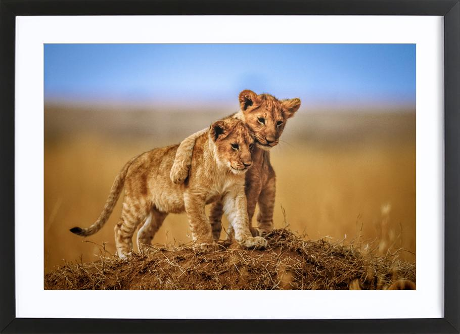 Brothers for Life - Jeffrey C. Sink -Bild mit Holzrahmen