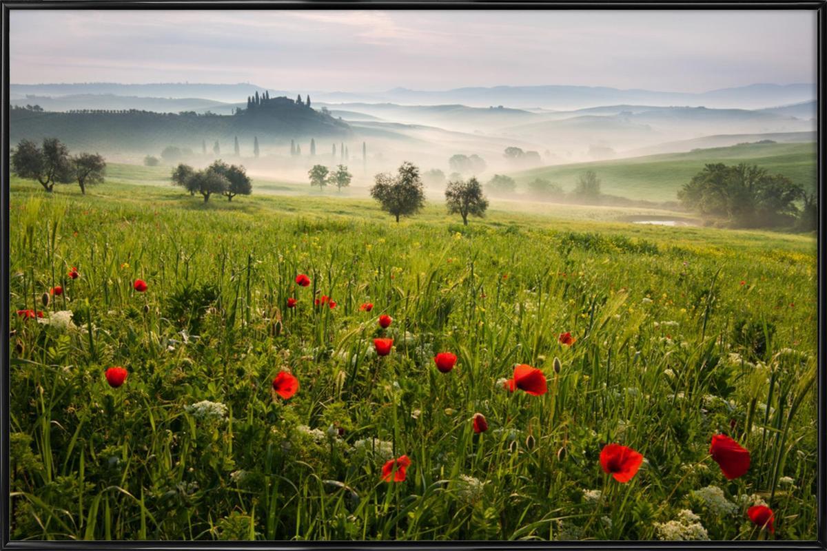 Tuscan Spring -Bild mit Kunststoffrahmen