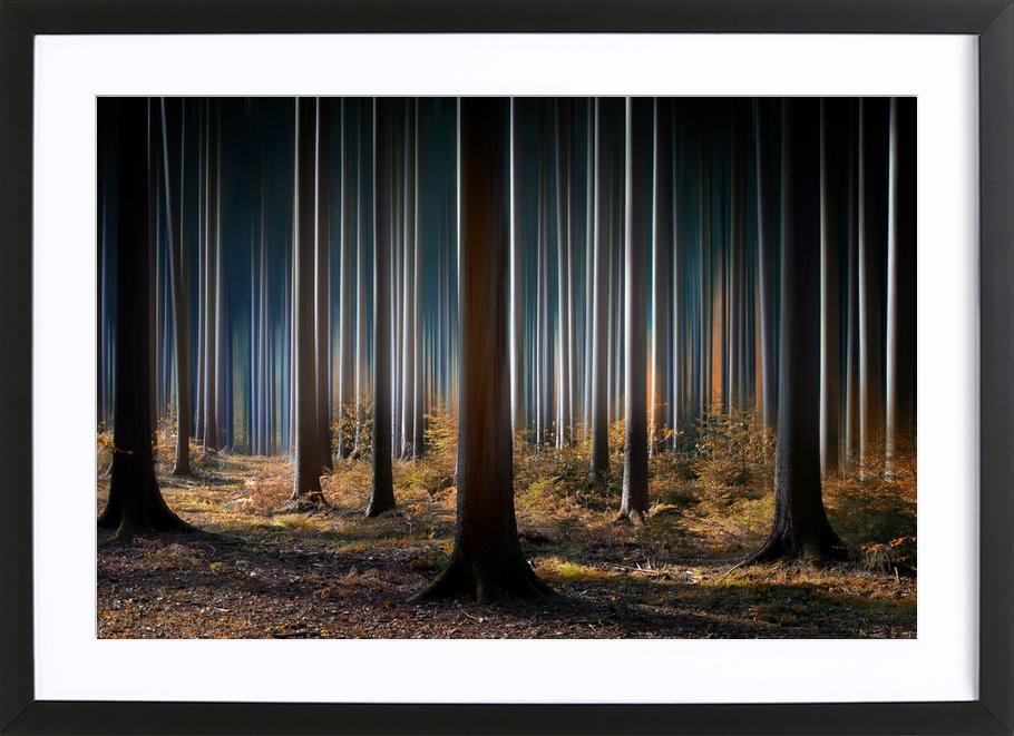 Mystic Wood -Bild mit Holzrahmen