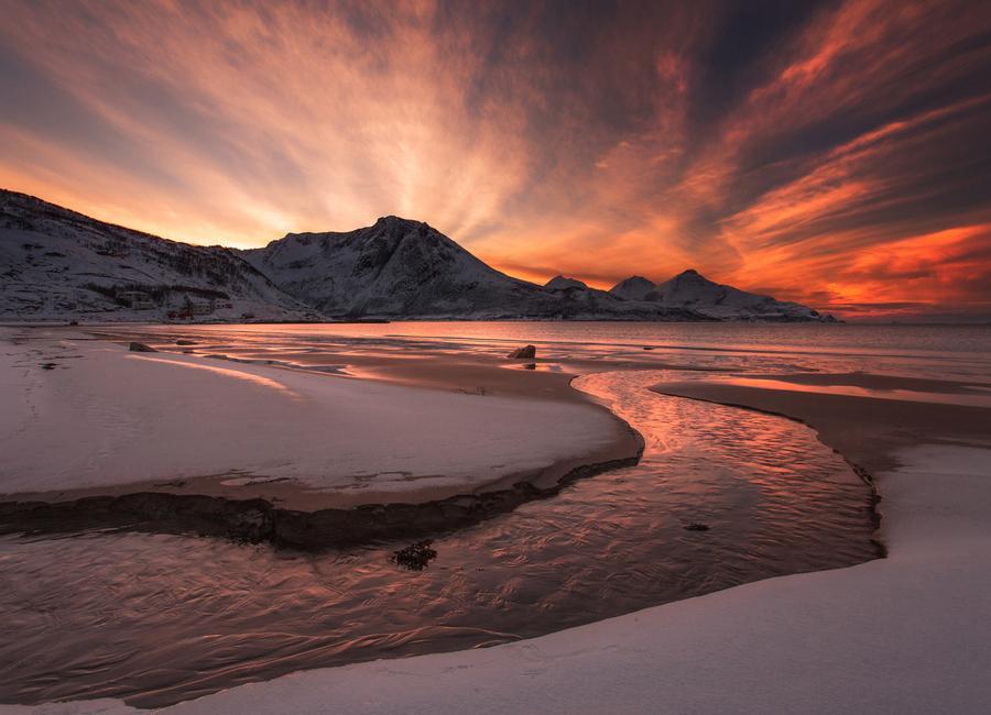 Golden Sunset -Leinwandbild