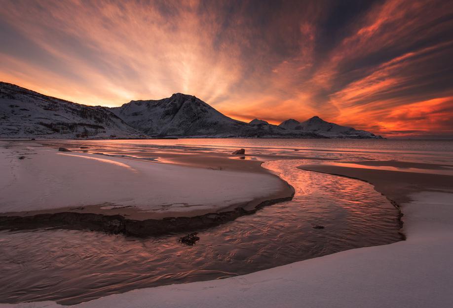 Golden Sunset -Alubild