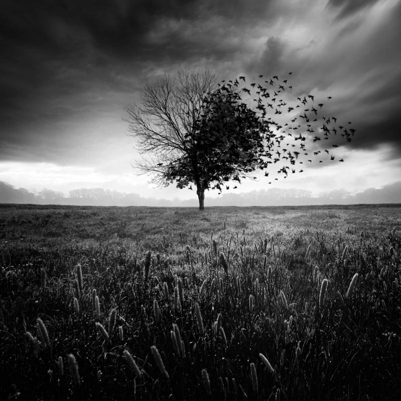 Illusion d'un printemps perdu canvas doek