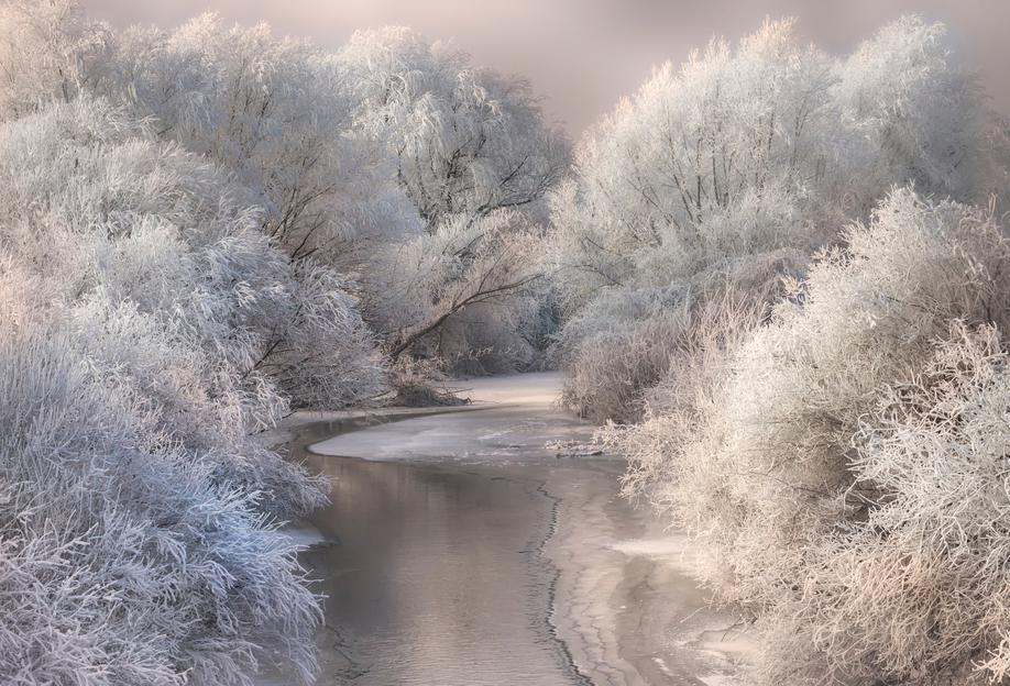 Winter Song alu dibond