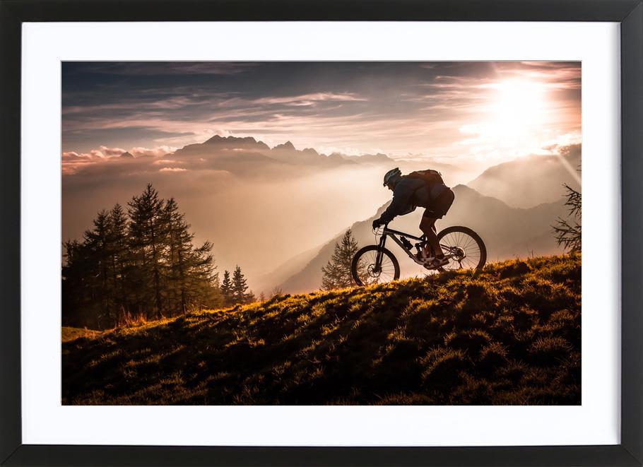 Golden Hour Biking ingelijste print
