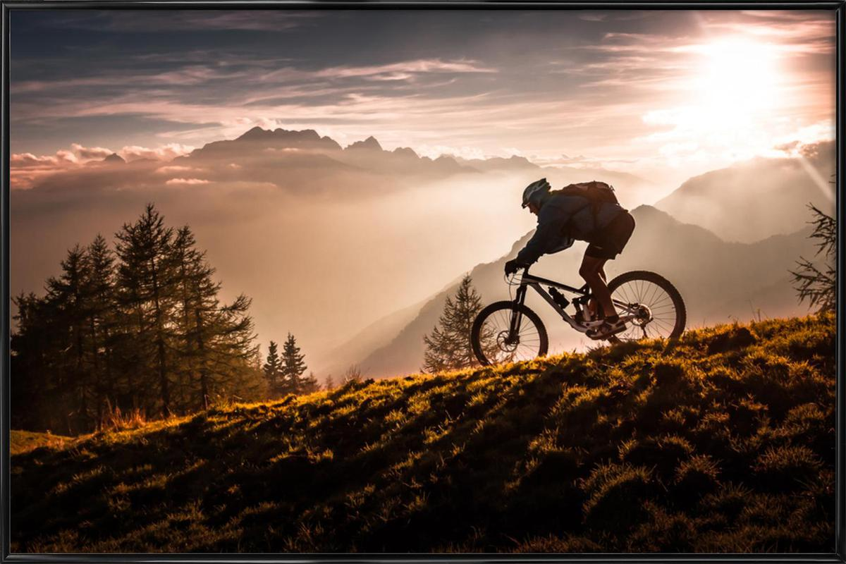 Golden Hour Biking Framed Poster
