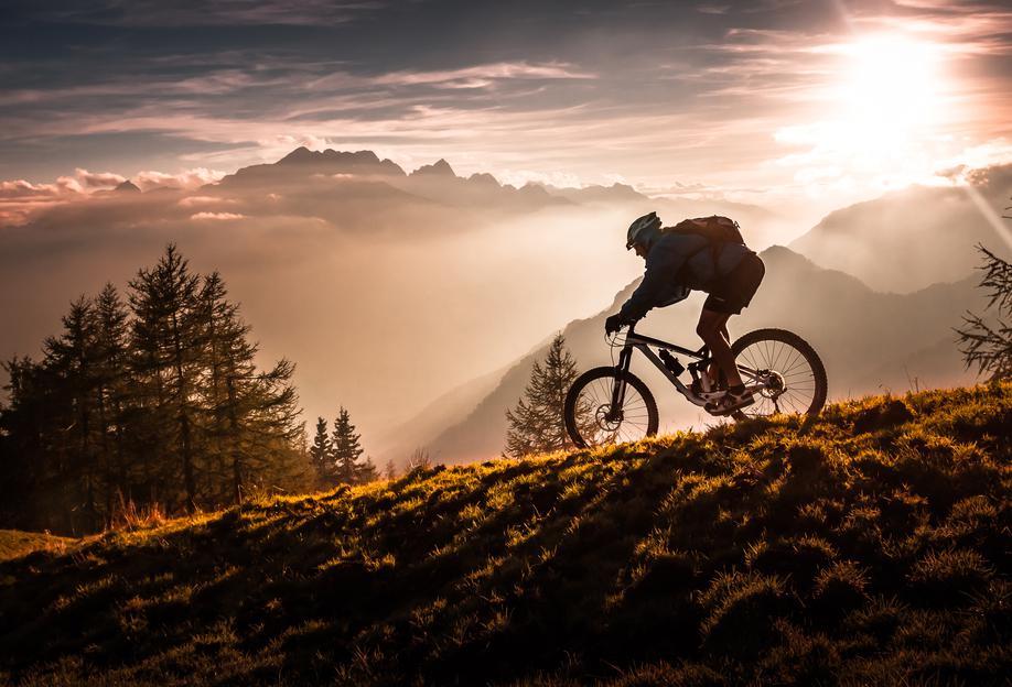 Golden Hour Biking alu dibond