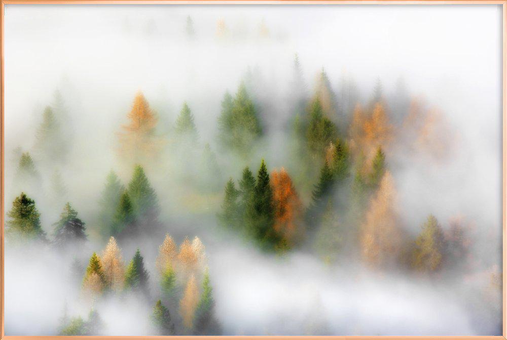 Autumn Dream - Kristjan Rems affiche sous cadre en aluminium