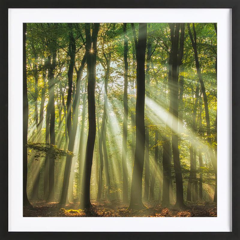 Sunny Start to the Day ........ - Piet Haaksma affiche sous cadre en bois