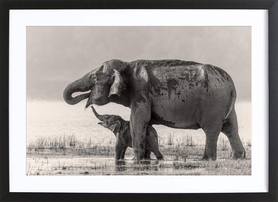 A Touching Moment - Jagdeep Rajput ingelijste print