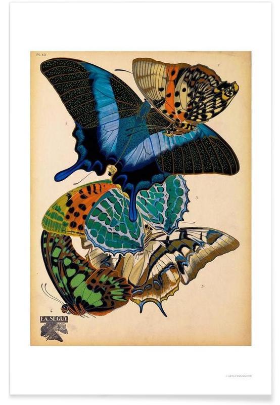 Butterflies Plate 4, E.A. Seguy poster