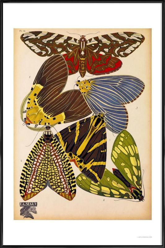 Butterflies Plate 5, E.A. Seguy Framed Poster